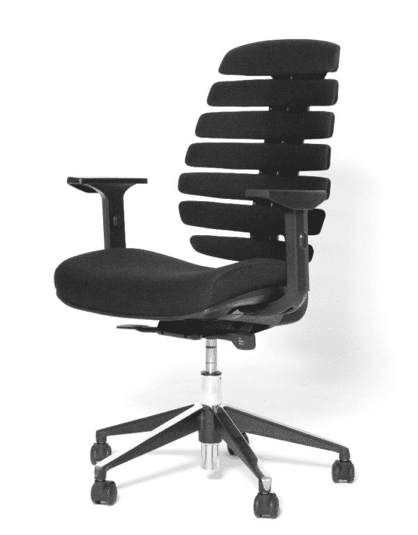 Ergonomische bureaustoel model Ruggengraatstoel
